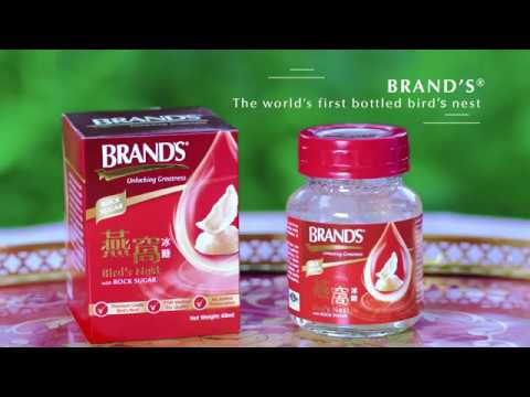 BRAND'S Bird Nest : Corporate VTR For Internal Use