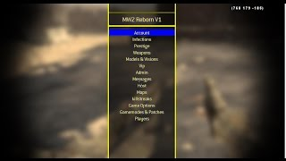 How to install a call of duty mw2 mod menu pc with mw2