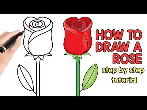 How to Draw a Rose - step by step drawing tutorial