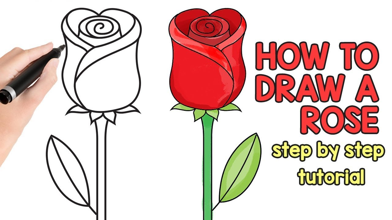 How To Draw A Rose Step By Step Drawing Tutorial Youtube