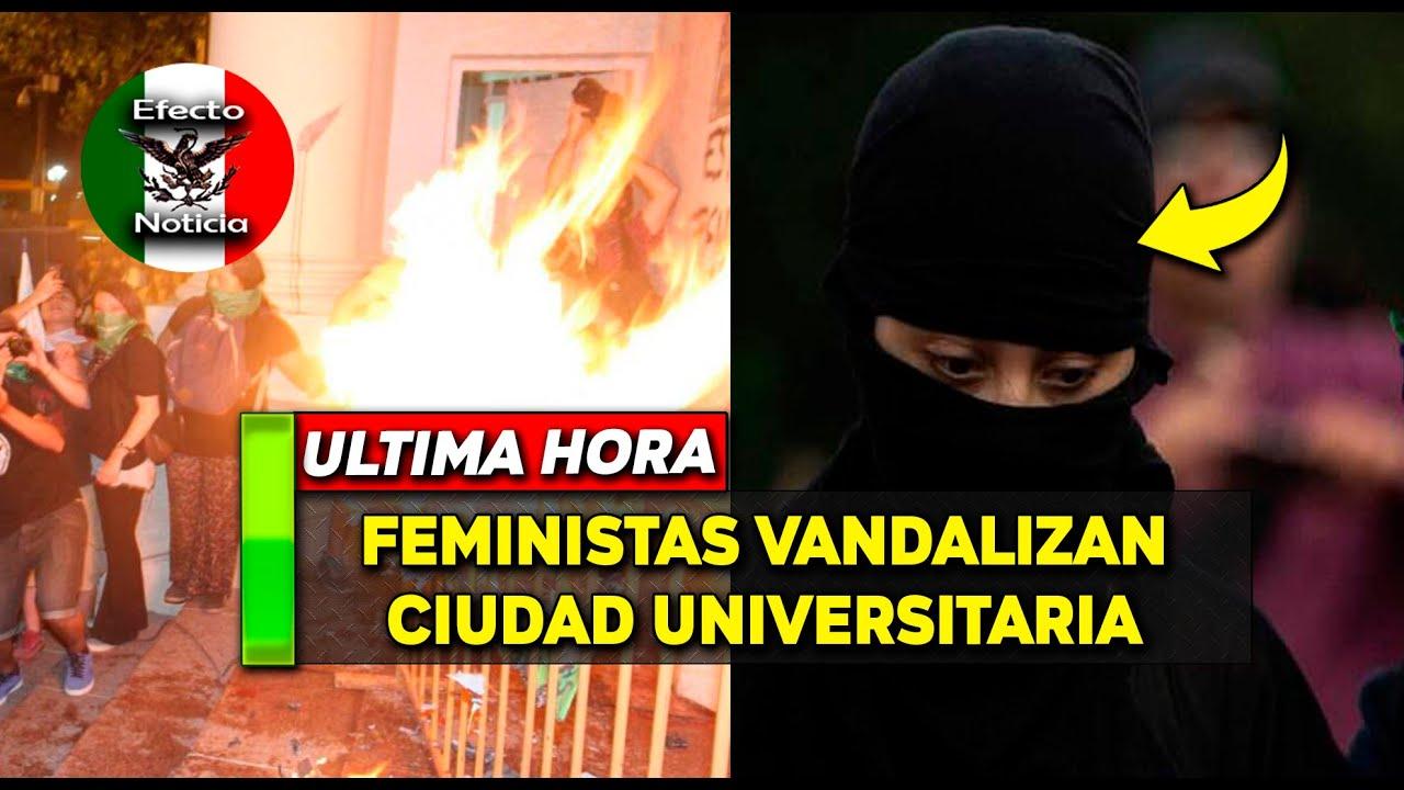 Feministas QUEMAN y PINTAN CU en plena madrugada.