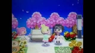 【とびだせどうぶつの森】グダグダでごめんなさいρ(・・、) thumbnail