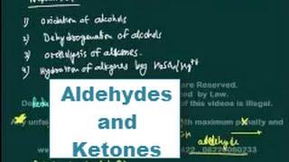 Organic Chemistry (Field Of Study)