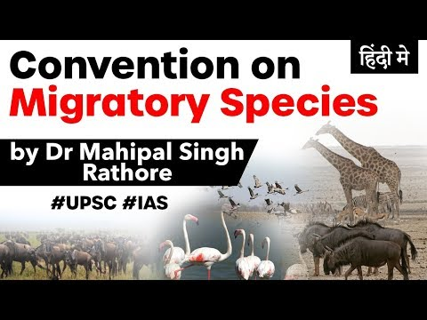 13th COP Of The Convention On Migratory Species At Gandhinagar, United Nations Environment Programme