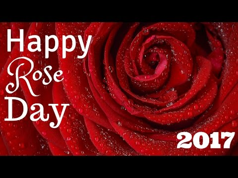 Beautiful Flowers Images | Happy Valentines Day | GreetingsByMaria