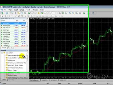 MT4 Navigator by Gallant Capital Markets