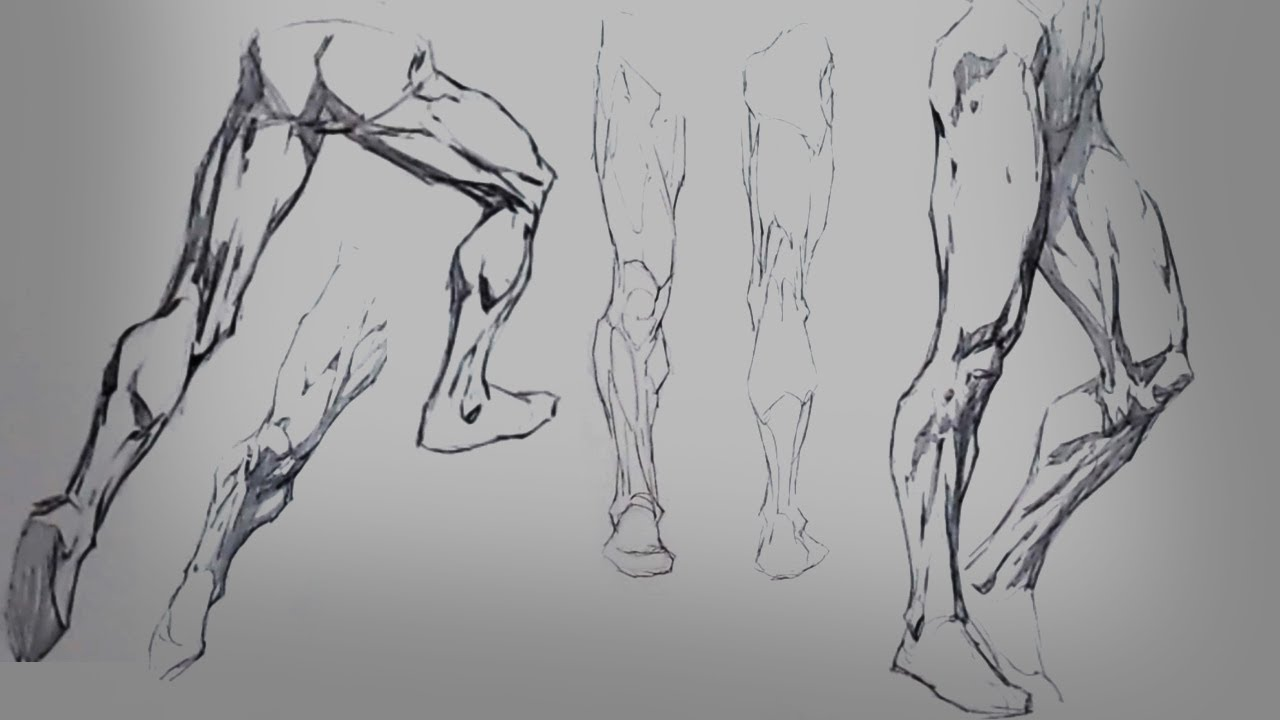 How to Draw Legs