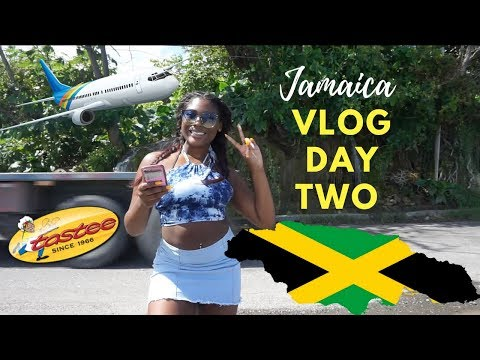 THEY WERE FIGHTING?!?! | Jamaica vlog part two