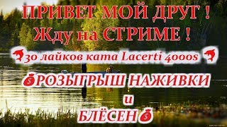 Russian Fishing 4 :  30 лайків ката Lacerti 4000s  +   ТУРНІР + РОЗІГРАШ НАЖИВКИ І БЛЕШЕНЬ