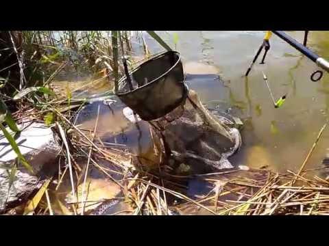морская рыбалка в саки