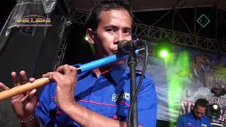 Download lagu Terkesima   Gerry Mahesa New Pallapa Laskar Singo Sawat