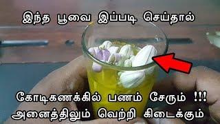இந்த பூவை இப்படி செய்தால் கோடீஸ்வரர் ஆகலாம் - vasiyam sarvalogam - manthrigam - money attraction