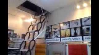 В процессе выбора раскладной лестницы и люка на чердак!(Творческая мастерская