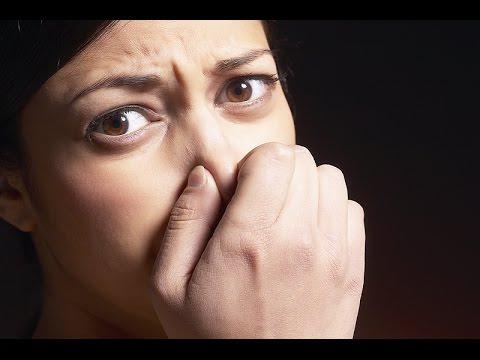 Самые вонючие запахи после которых жизненно необходим глоток свежего воздуха
