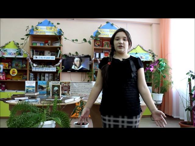Изображение предпросмотра прочтения – ВалерияХаритонова читает произведение «Зимнее утро» А.С.Пушкина