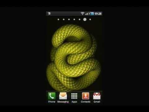 3D Animated Snake Live Wallpaper - YouTube