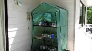 Four Tier Greenhouse For Growing Seedlings