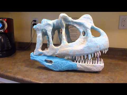 Ceratosaurus Skull replica in foam and papier mache
