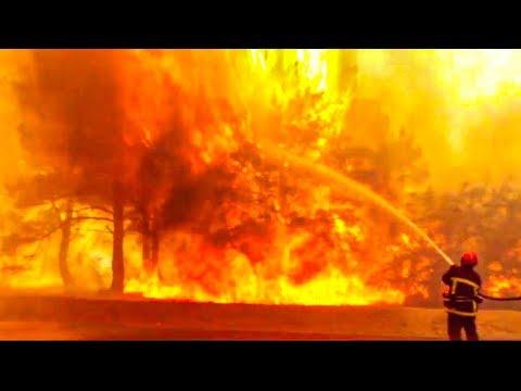 Pompiers de Marseille : des héros au coeur de l'incendie du siècle