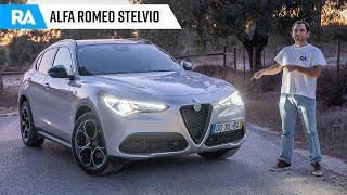 Alfa Romeo Stelvio Q2 (190cv). O SUV que gosta de curvas
