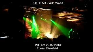 Pothead - Wild Weed @ Forum Bielefeld 22.02.2013 (LIVE) HD