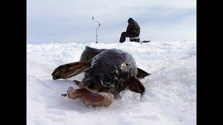 Зимняя Рыбалка.ПЕРВЫЙ ЛЁД!!!