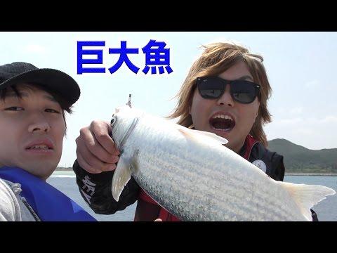 高さ10mから6時間海釣りしたら???が釣れた!!!