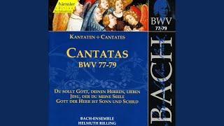 Du sollt Gott, deinen Herren, lieben, BWV 77: Aria: Ach, es bleibt in meiner Liebe (Alto)