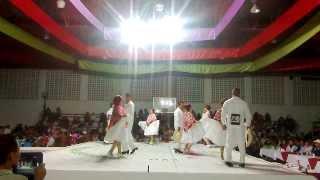 Potosinos. Concurso de Huapango Jacala 2013 I