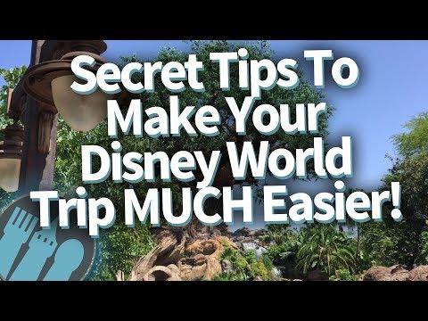 Secret Tips To Make Your Disney World Trip MUCH Easier!