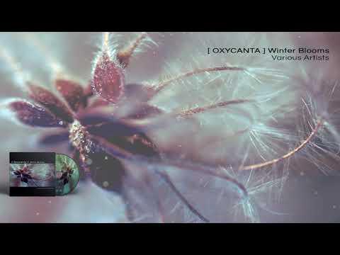 VA - Oxycanta Winter Blooms - 06 Nexus by AES DANA