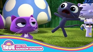Bartleby Ninja Cat Training | True and the Rainbow Kingdom