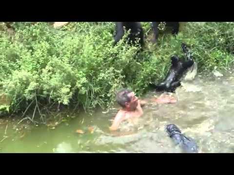 Khỉ dữ tấn công ông già say rượu - MCG4ever.com