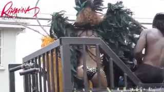 Rihanna Launts Curves Dancing Barbados Carnival