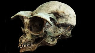 11 Most Amazing Recent Archaeological Discoveries