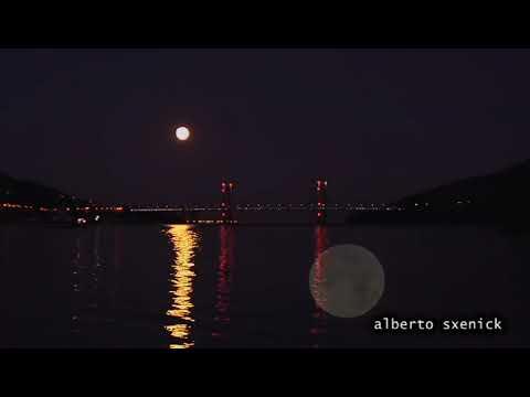 Magistral espectáculo de la naturaleza en la Ría de Vigo