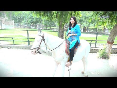 Lahore Zoo ki Sair چڑیا گھر کو چڑیا گھر کیوں کہا جاتا ہے؟