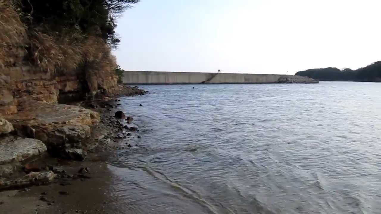 島 釣り 佐久