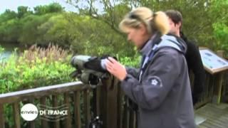 Finistère Tourisme : Bénodet, Concarneau, Fouesnant - vidéo