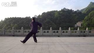 Master Gu Shining - Taichi 33 Filmed From the Back For Demonstration Purposes