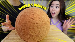 THE WORLD'S LARGEST 8lb CH…