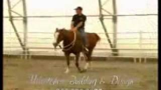 Fabric Building - Equestrian Indoor Riding Arena 1.360.366.3077