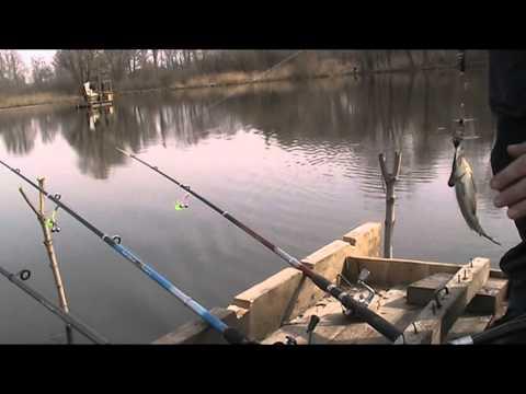 весенняя рыбалка на карася в марте видео