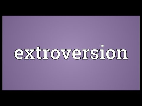 Extroversion Meaning