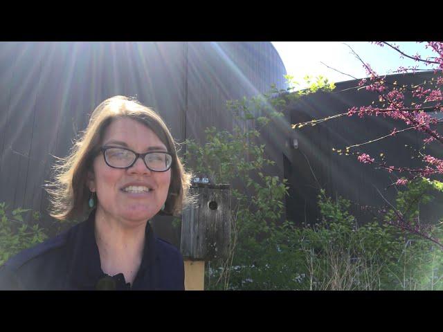 Belle Isle Nature Center | Backyard Bird Quick Tips: Nest Boxes