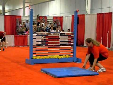 Dog Show - High Bar Jumping