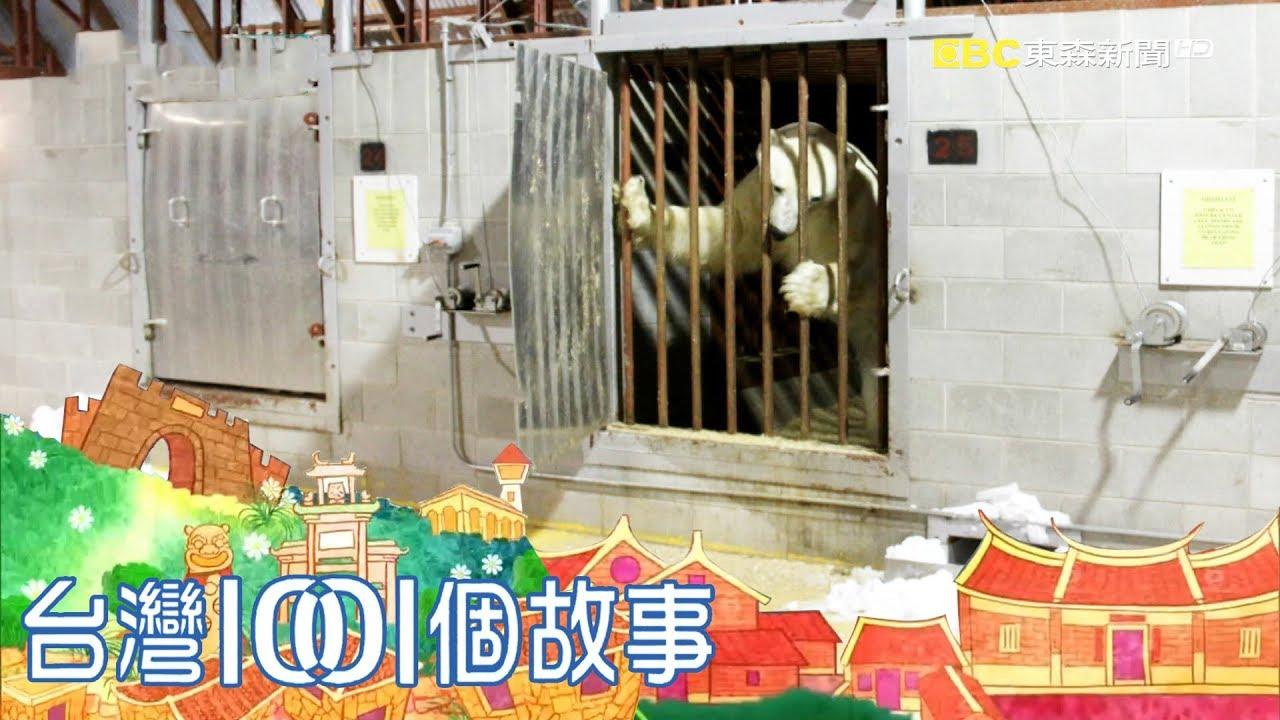 地球唯一北極熊監獄 減緩人熊對立衝突 part2 臺灣1001個故事 - YouTube