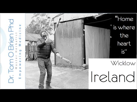 Going Home to Wicklow, Ireland - Vlog 2