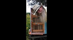 Our Classic TexAZ  33 frame  AZ Hive