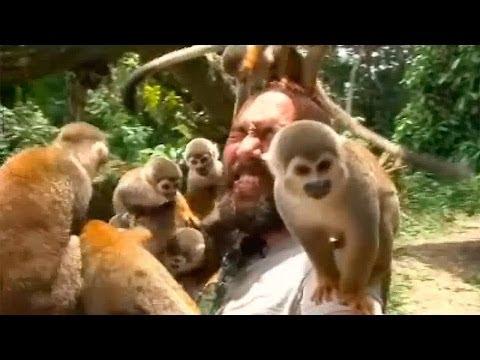 Animales por el mundo: la isla de Los Micos, en el Amazonas colombiano
